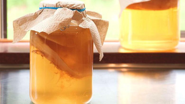 Как заправить чайный гриб в домашних условиях